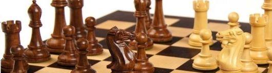 logo szachy
